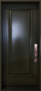 Black painted steel door with Executive panel