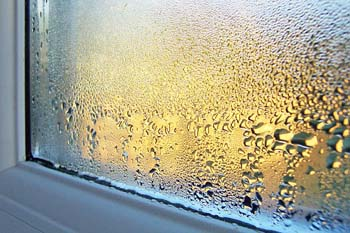 Major Condensation On Window Glass